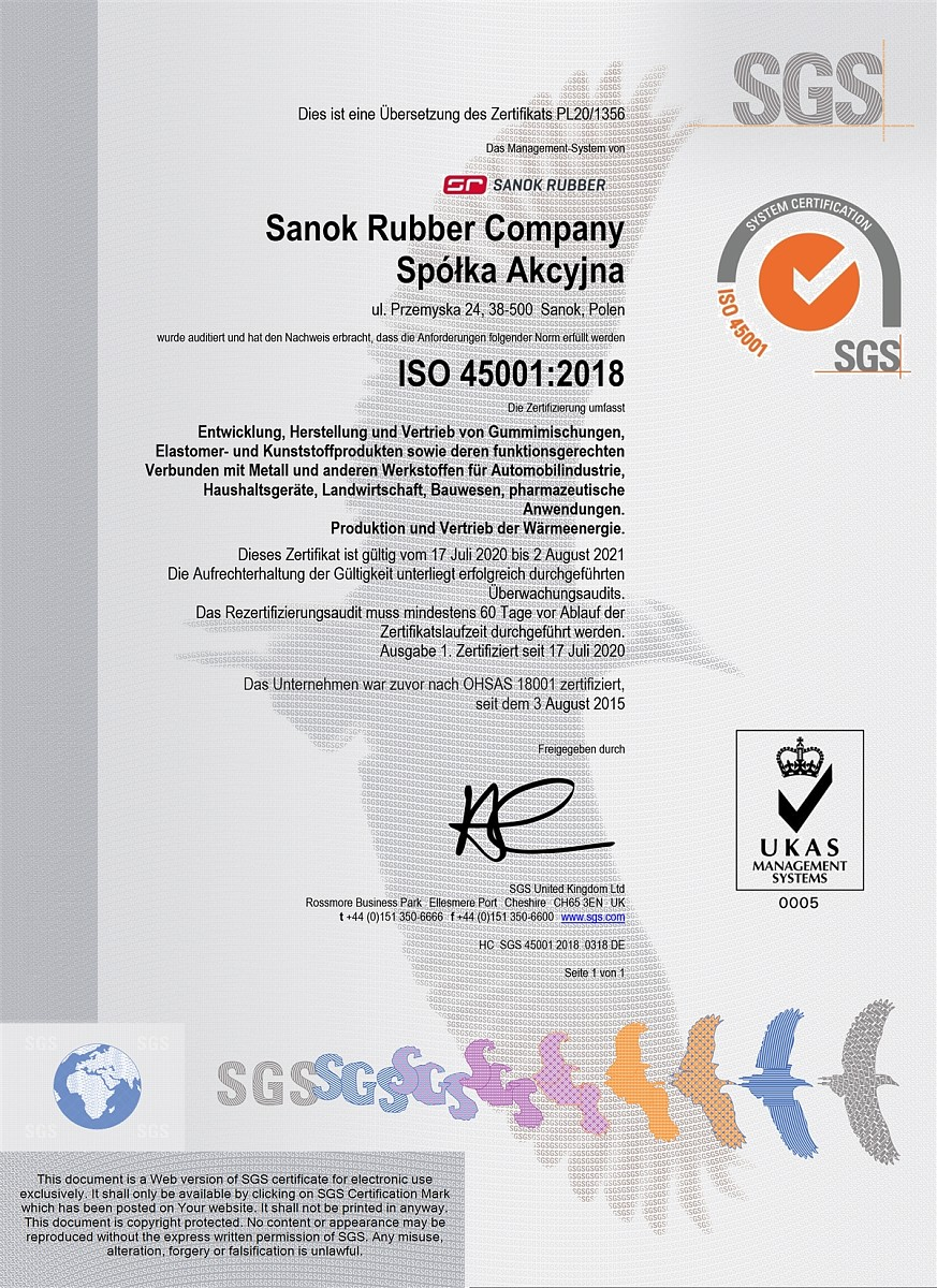 DE ISO 45001.jpg